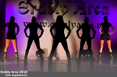 Erdély Arca 2010